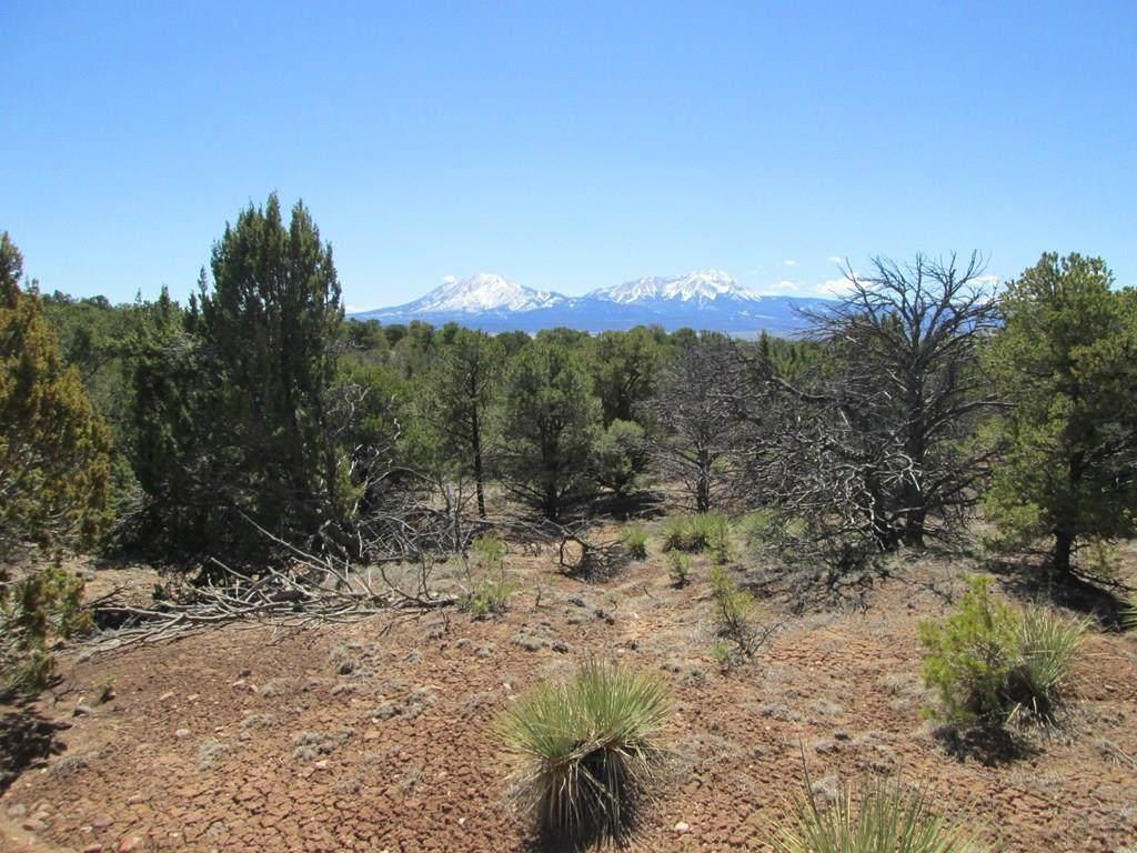 lot 14 Majors Ranch - Photo 1