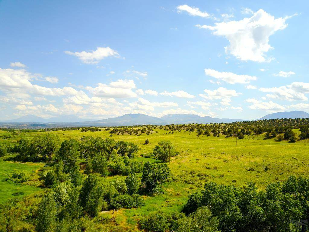 Lot 13 Turkey Creek Ranches - Photo 1