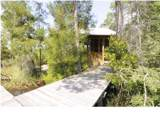 87 Torrey Pine Trl - Photo 14