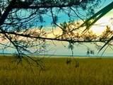 1623 Forsythia Trail - Photo 20