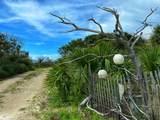 195 Antilles Dr - Photo 5