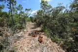 649 W Gulf Beach Dr - Photo 17