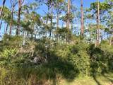 1623 Forsythia Trail - Photo 10