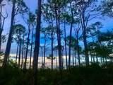 1623 Forsythia Trail - Photo 3