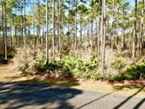 122 Treehouse Cir - Photo 1