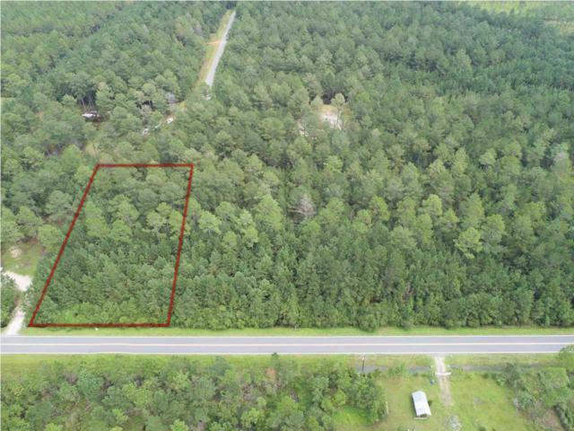 28 Jarrott Daniels Rd, WEWAHITCHKA, FL 32465 (MLS #260102) :: Coast Properties