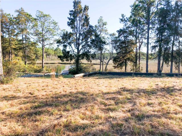 104 Slash Pine Ln, OVERSTREET, FL 32410 (MLS #260640) :: Coast Properties