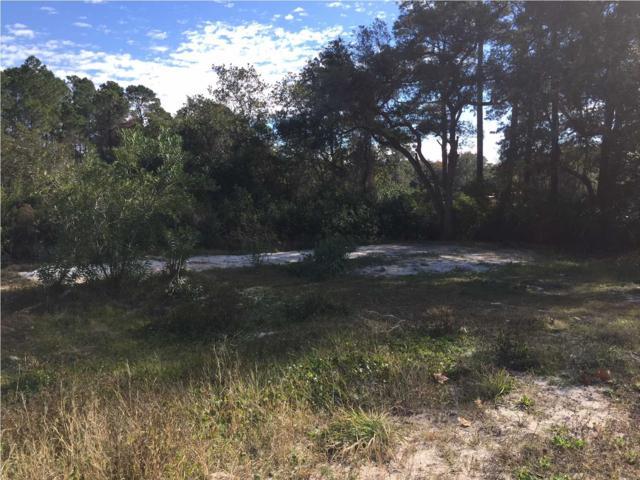 300 Bear Foot Ln, CARRABELLE, FL 32322 (MLS #260736) :: Coast Properties