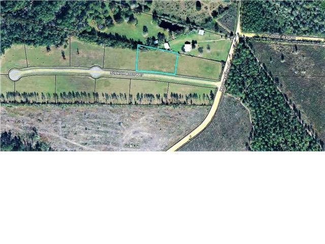 2 Spanish Moss Way, WEWAHITCHKA, FL 32465 (MLS #260859) :: Coast Properties
