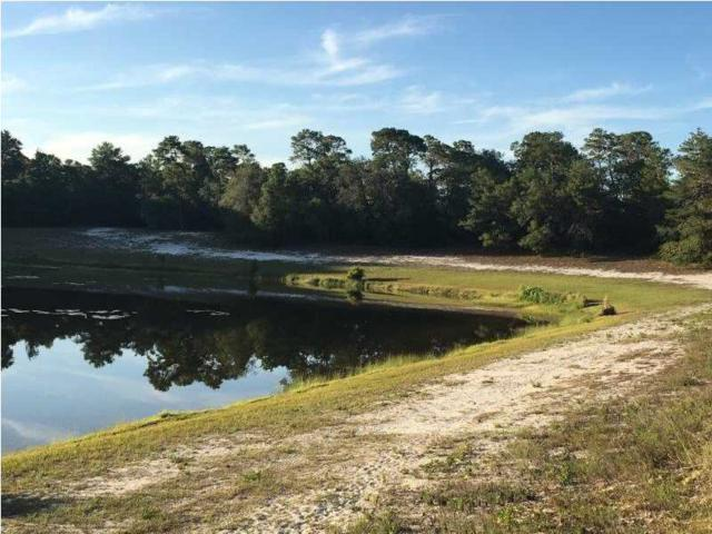 158 Lakes On The Bluff Dr, EASTPOINT, FL 32328 (MLS #260887) :: Coast Properties
