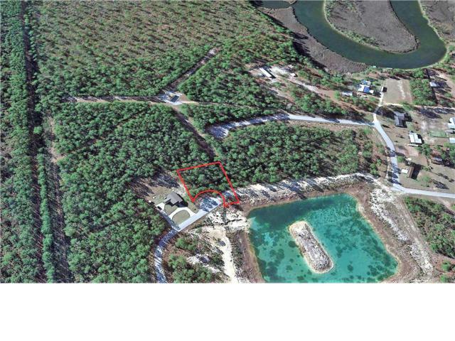 19 Trey's Ln, WEWAHITCHKA, FL 32465 (MLS #260935) :: Coast Properties