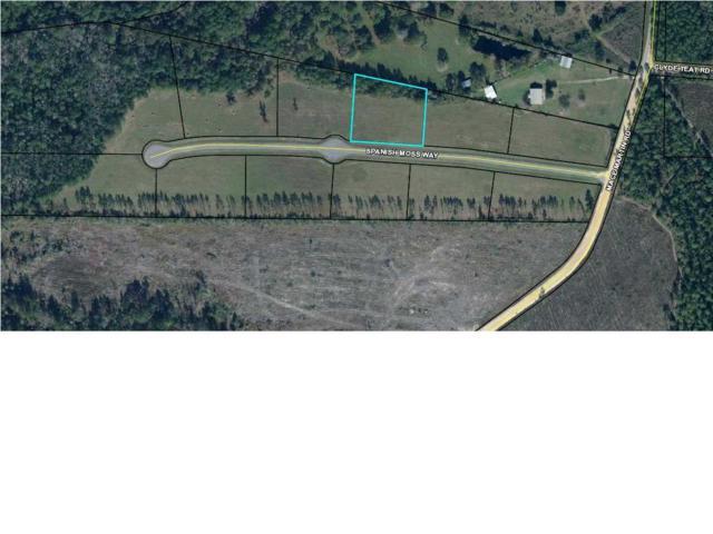 3 Spanish Moss Way, WEWAHITCHKA, FL 32465 (MLS #260948) :: Coast Properties