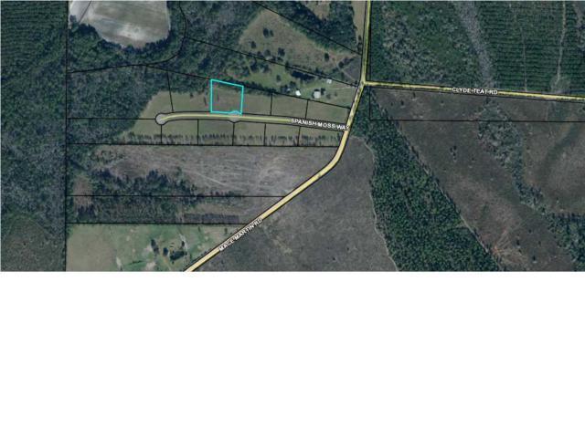 4 Spanish Moss Way, WEWAHITCHKA, FL 32465 (MLS #260949) :: Coast Properties