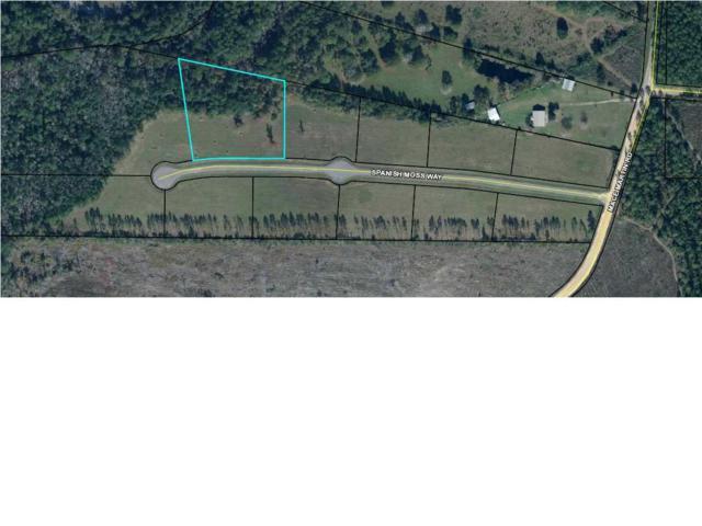 5 Spanish Moss Way, WEWAHITCHKA, FL 32465 (MLS #260951) :: Coast Properties