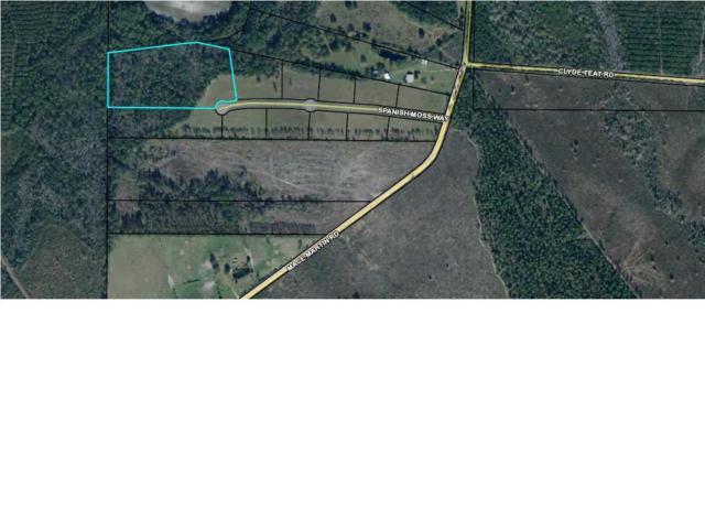 6 Spanish Moss Way, WEWAHITCHKA, FL 32465 (MLS #260953) :: Coast Properties