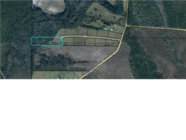 7 Spanish Moss Way, WEWAHITCHKA, FL 32465 (MLS #260955) :: Coast Properties