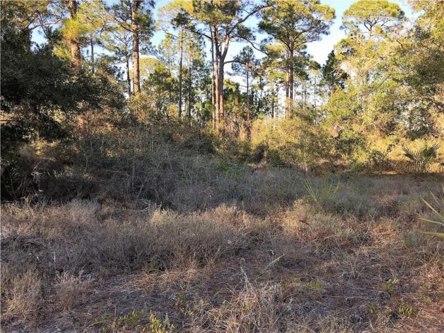 1711 Spacey Dr, CARRABELLE, FL 32322 (MLS #261018) :: Coast Properties