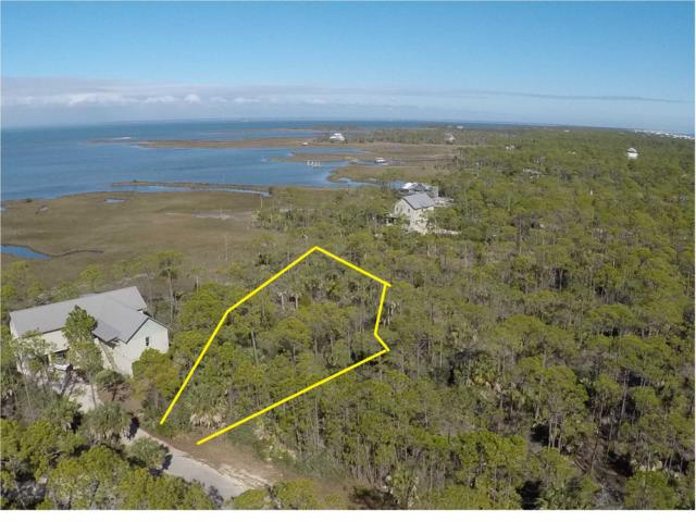 1739 Kingfisher Ct, ST. GEORGE ISLAND, FL 32328 (MLS #261029) :: Coast Properties