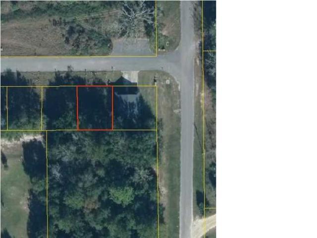 2 Ernie Dr, WEWAHITCHKA, FL 32465 (MLS #261125) :: Coast Properties