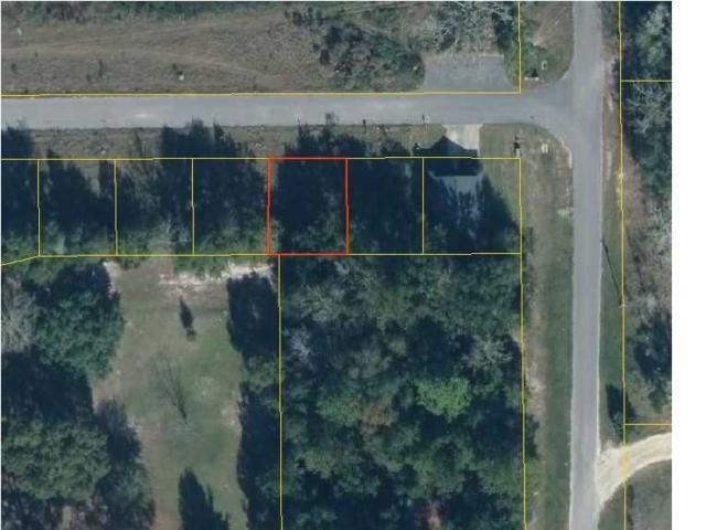 3 Ernie Dr, WEWAHITCHKA, FL 32465 (MLS #261126) :: Coast Properties