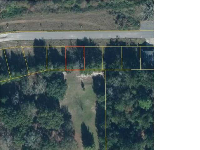 5 Ernie Dr, WEWAHITCHKA, FL 32465 (MLS #261128) :: Coast Properties