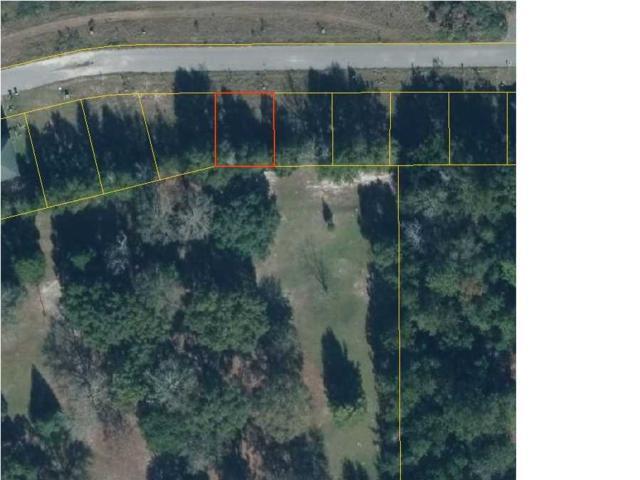 6 Ernie Dr, WEWAHITCHKA, FL 32465 (MLS #261131) :: Coast Properties