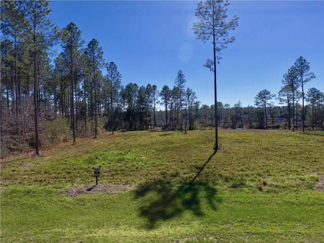 36 Wide Water Cir., WEWAHITCHKA, FL 32465 (MLS #261222) :: Coast Properties