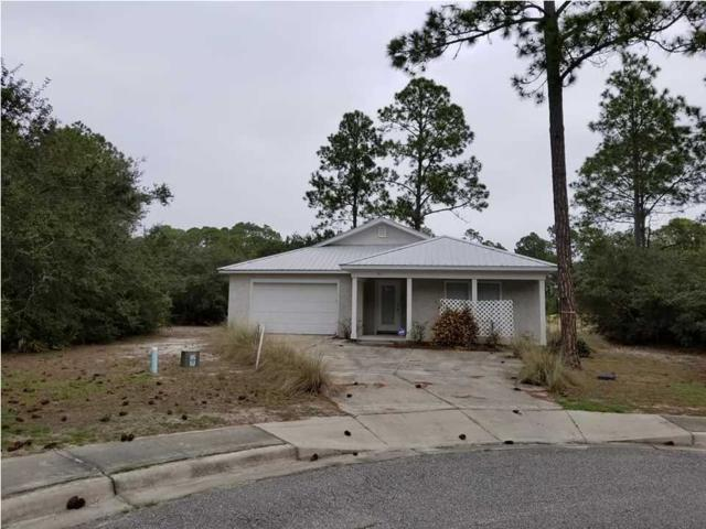 161 Skimmer Dr, CARRABELLE, FL 32323 (MLS #261276) :: Berkshire Hathaway HomeServices Beach Properties of Florida