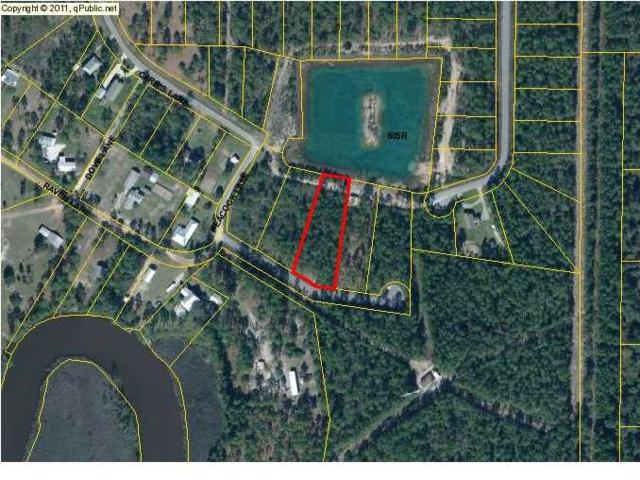 0 Peacock Ln, WEWAHITCHKA, FL 32465 (MLS #261463) :: Coast Properties