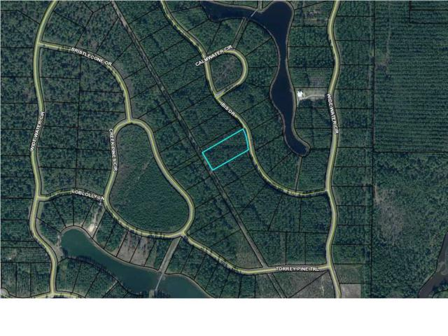 143 Ibis Dr. #143, WEWAHITCHKA, FL 32465 (MLS #261925) :: Coast Properties