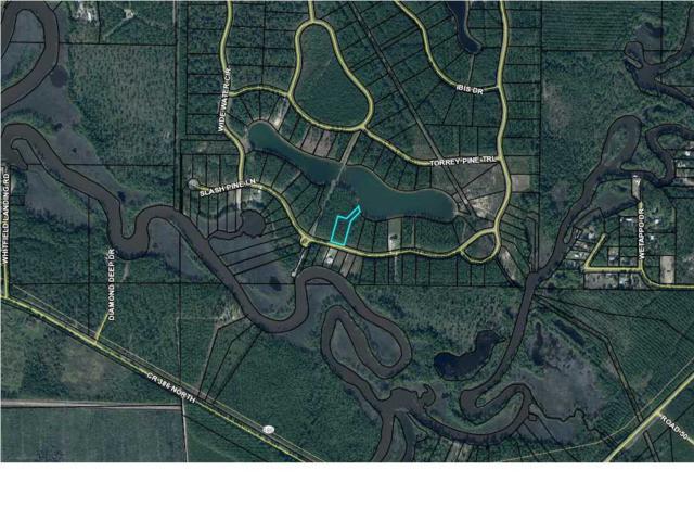 68 Wide Water Cir. #68, WEWAHITCHKA, FL 32465 (MLS #261927) :: Coast Properties