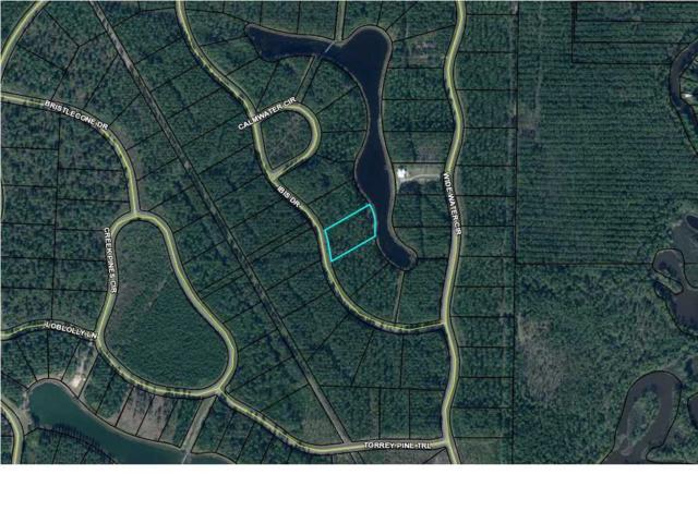 164 Ibis Dr. #164, WEWAHITCHKA, FL 32465 (MLS #261928) :: Coast Properties
