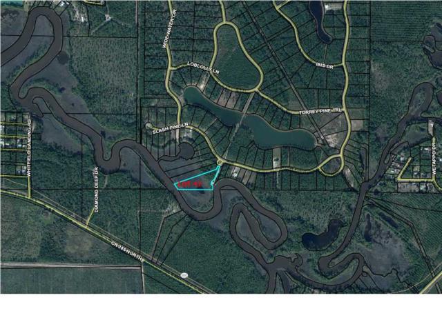 42 Wide Water Cir. #42, WEWAHITCHKA, FL 32465 (MLS #261931) :: Coast Properties