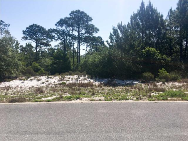1 Hemmingway Cir., CAPE SAN BLAS, FL 32456 (MLS #261990) :: Coast Properties