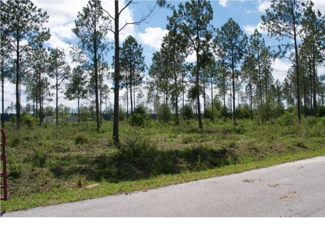10 Goldenrod Ln, WEWAHITCHKA, FL 32465 (MLS #261992) :: Berkshire Hathaway HomeServices Beach Properties of Florida