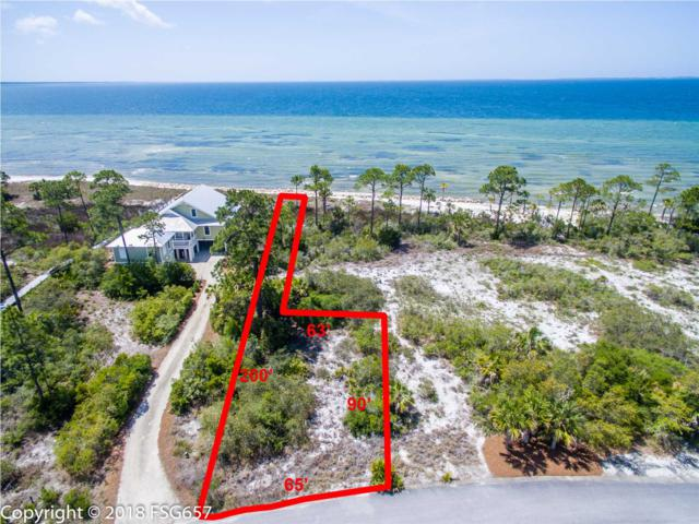 65 Windmark Way, PORT ST. JOE, FL 32456 (MLS #262009) :: Coast Properties