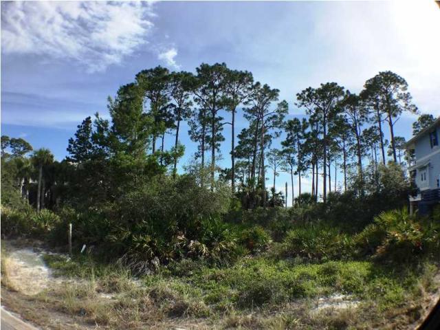 413 Windmark Way Lot 50, PORT ST. JOE, FL 32456 (MLS #262455) :: Berkshire Hathaway HomeServices Beach Properties of Florida