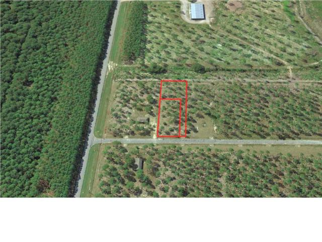 107 Goldenrod Ln, WEWAHITCHKA, FL 32465 (MLS #262508) :: Berkshire Hathaway HomeServices Beach Properties of Florida