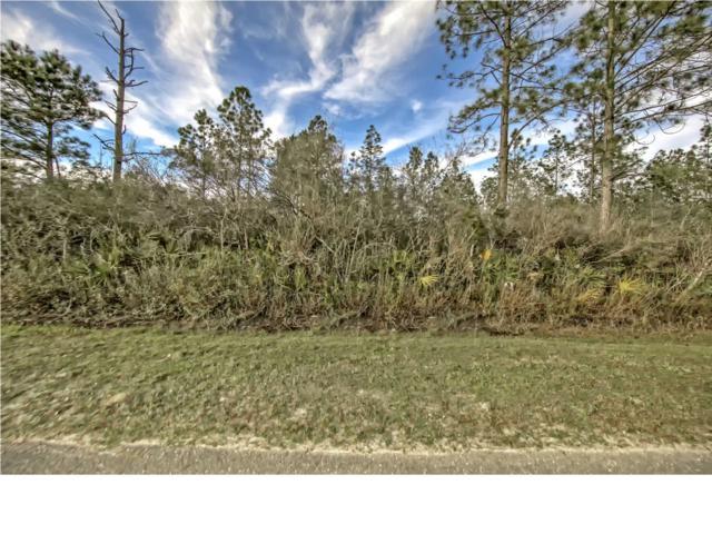0 Borders Rd, WEWAHITCHKA, FL 32465 (MLS #262594) :: Berkshire Hathaway HomeServices Beach Properties of Florida