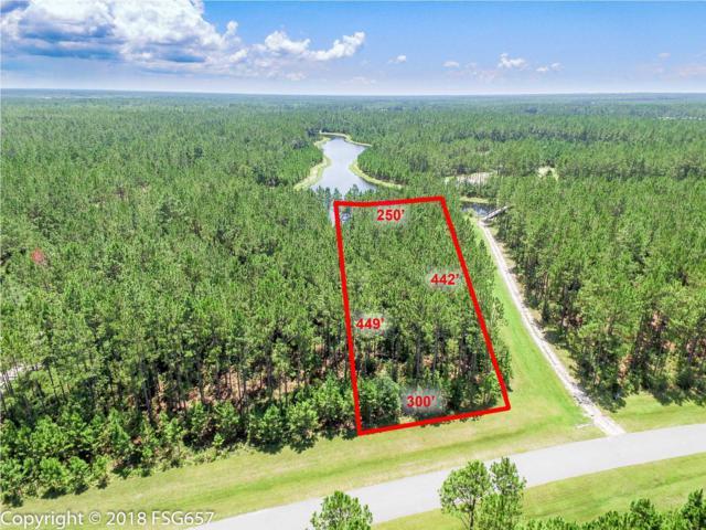 177 Wide Water Cir., OVERSTREET, FL 32465 (MLS #262712) :: CENTURY 21 Coast Properties
