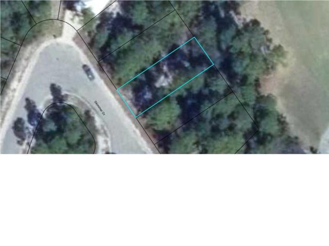 155 Skimmer Dr, Carabelle, FL 32322 (MLS #262713) :: Berkshire Hathaway HomeServices Beach Properties of Florida