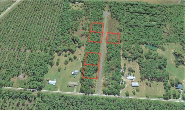 0 Jazzy Lane, WEWAHITCHKA, FL 32465 (MLS #262714) :: The Naumann Group Real Estate, Coastal Office
