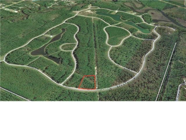 152 Wide Water Cir., WEWAHITCHKA, FL 32465 (MLS #262745) :: CENTURY 21 Coast Properties