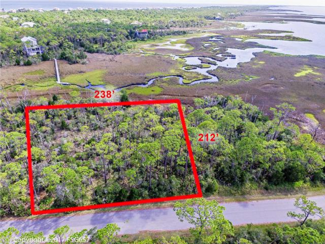 1651 Forsythia Trail, ST. GEORGE ISLAND, FL 32328 (MLS #262823) :: Coast Properties