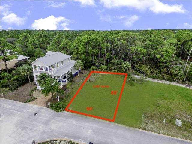 293 Cord Grass Way, PORT ST. JOE, FL 32456 (MLS #262968) :: Coast Properties