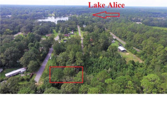 1819 Waters Dr, WEWAHITCHKA, FL 32465 (MLS #262992) :: Coastal Realty Group