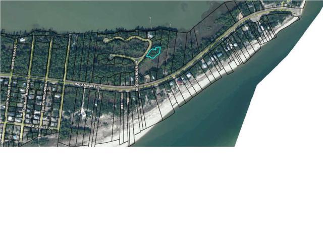 220 Sea Lavender Ln, PORT ST. JOE, FL 32456 (MLS #263031) :: Coastal Realty Group