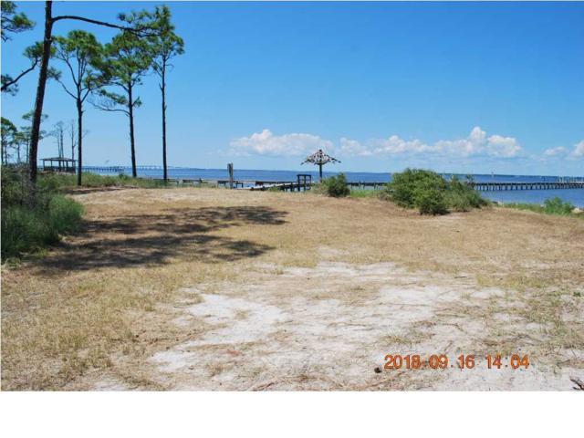 1139 Amerigo Ct, ST. GEORGE ISLAND, FL 32328 (MLS #263099) :: Coastal Realty Group