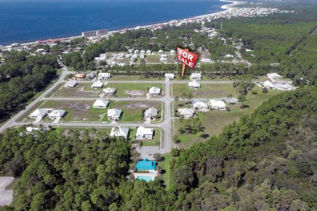 201 Stfrancis, MEXICO BEACH, FL 32456 (MLS #300042) :: Coast Properties