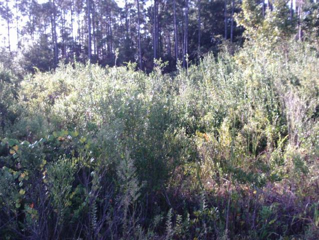 0 Highway 67, CARRABELLE, FL 32322 (MLS #300050) :: Coast Properties